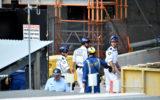 sydney scaffold collapse
