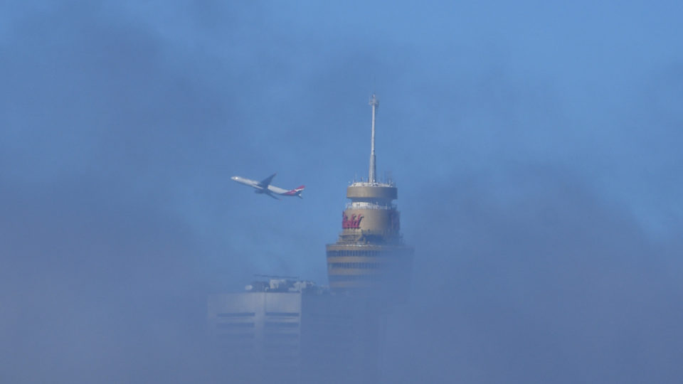 sydney fog