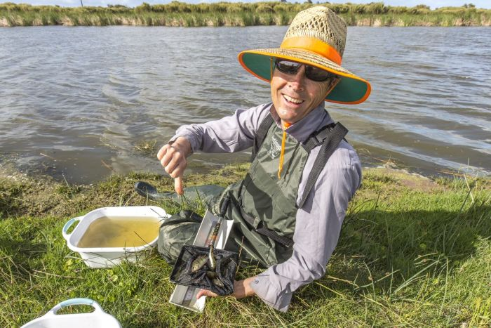 murray-darling-fish-health