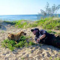 Fraser Island Dingoes