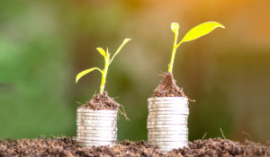 Two stacks of coins with plants growing from the top of each.