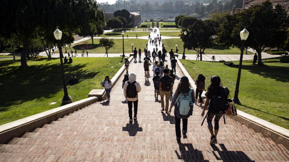 measles-university