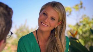 Gwyneth Paltrow The Politiician