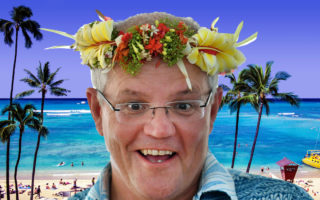 scott morrison hawaii business class