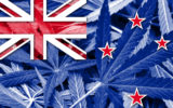 New Zealand Flag on cannabis background