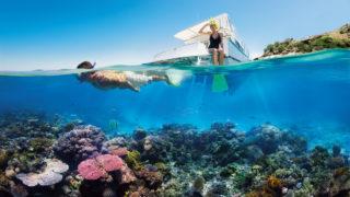 barrier reef unesco
