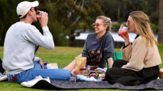 Friendship Island picnic