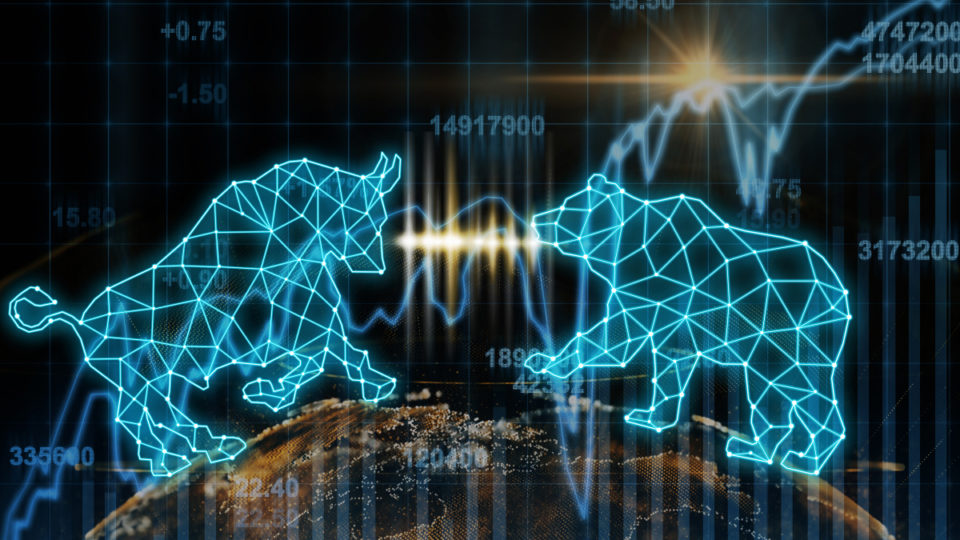 A stock image of a wireframe bear and bull.