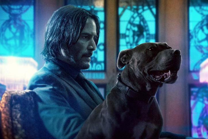 Keanu Reeves dog John Wick Chapter Three