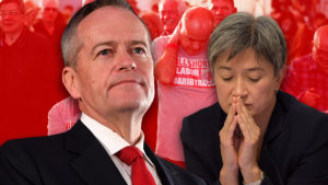 reason for Labor defeat