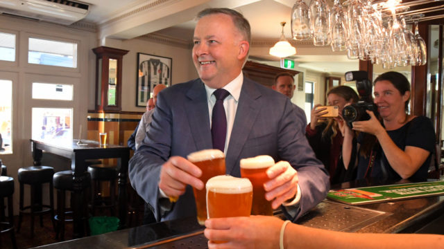 Anthony Albanese hotly tipped to replace Bill Shorten as leadership candidates emerge
