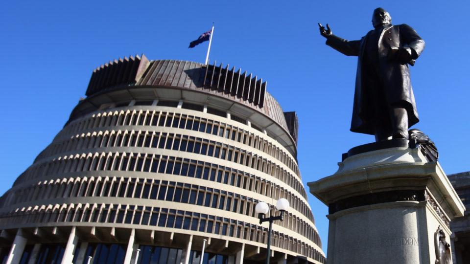 rapist nz parliament