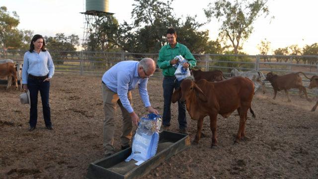 Emotional PM Scott Morrison visits Queensland farm