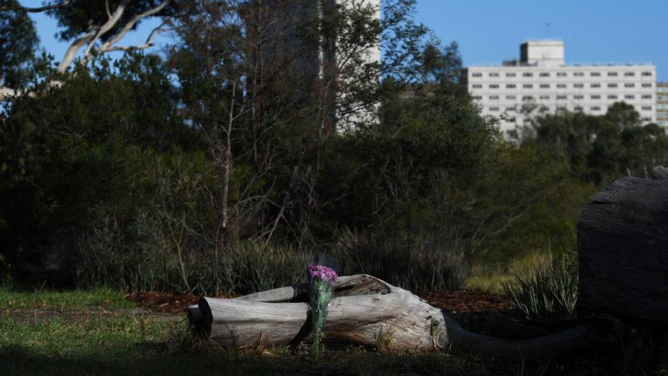 Flowers left in Royal Park near where Courtney Herron's body was found.