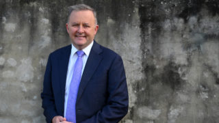 anthony albanese labor