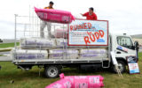 pink batts class action