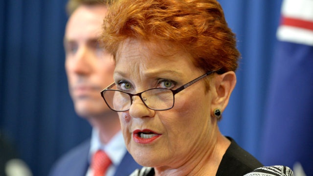 'Nothing but liars': Fury as Hanson points finger over domestic violence allegations