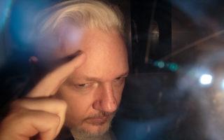 julian assange sweden