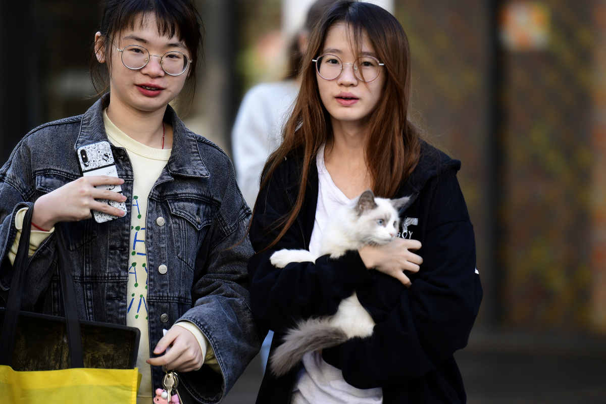 A resident is seen with her cat outside the Mascot Towers building in Sydney. Photo: AAP
