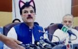 press conference cat filter