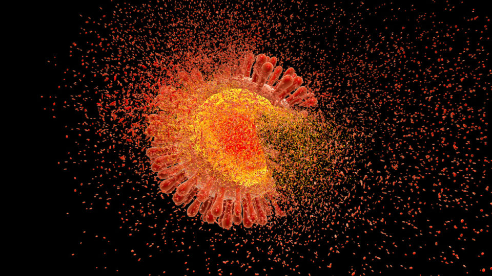 AIDS Breakthrough: Gene detective destroys the HIV virus
