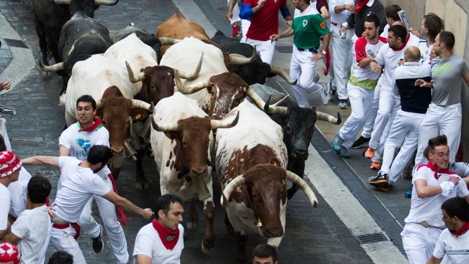 australians injured bull run