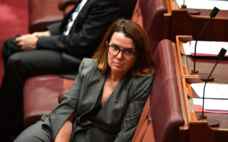 Social Services Minister Anne Ruston has come under fire for suggesting the pension is generous.