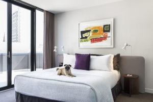 luxury hotels pets stay