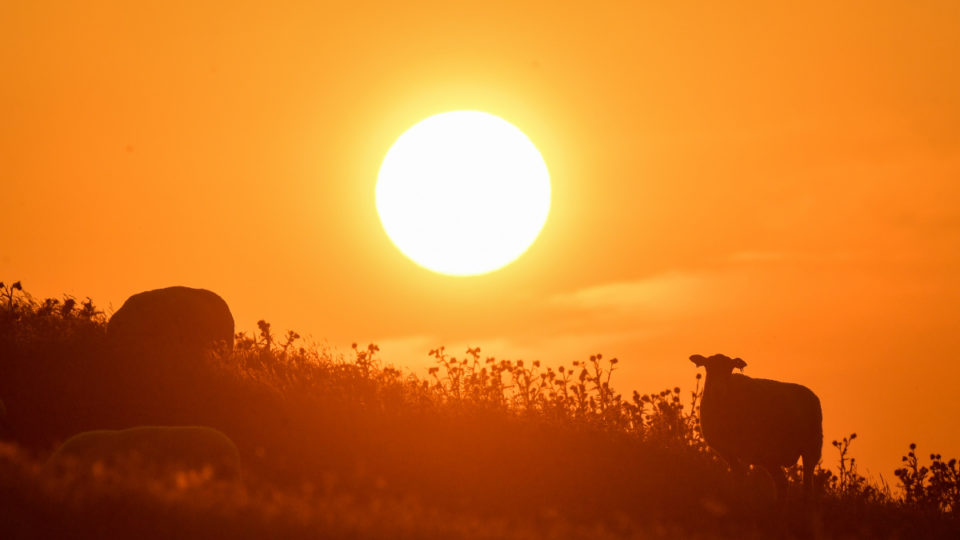 sun-death-star