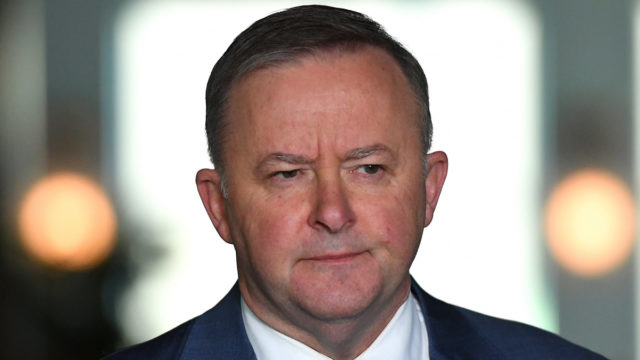What did Albo know and when did he know it? Labor rift grows amid leaks and whispers
