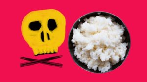 Rice bacteria
