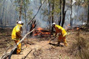 bushfire season nsw 2019