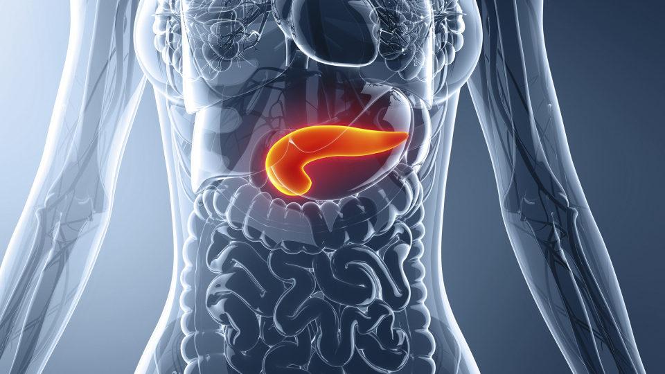 2 Breakthrough studies on pancreatic cancer in one week