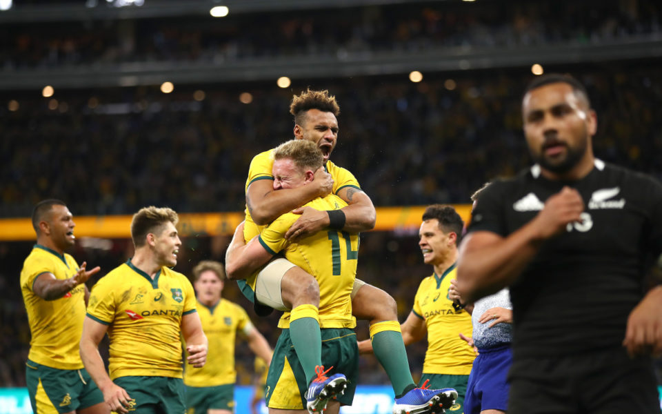 Bledisloe Cup Wallabies Stun All Blacks And The World The New Daily