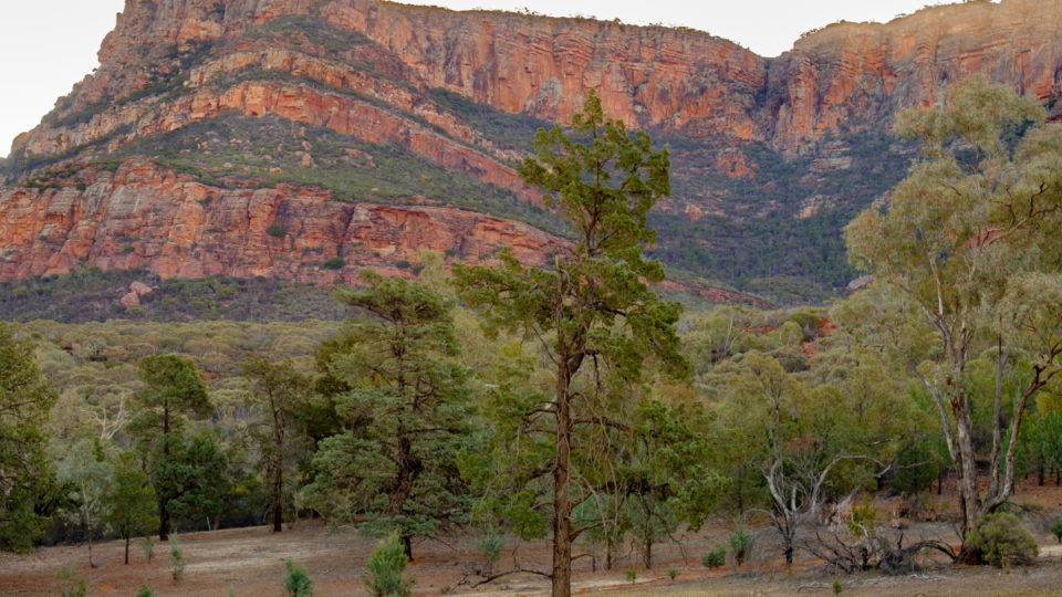 Two men dead in South Australian climbing accident