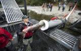fish-cannon-salmon