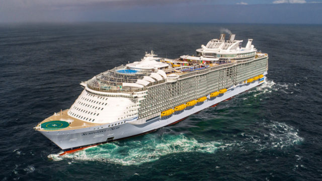 Australian man dies after going overboard on cruise ship