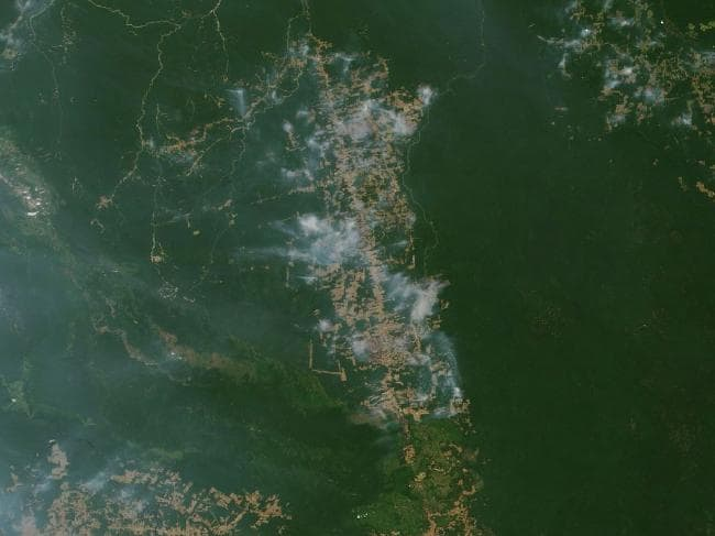 The fires can now be seen form space. Photo: NASA