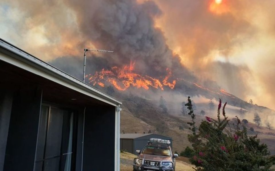 Thousands of residents in path of wild bushfires forced to