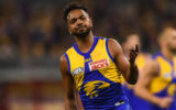 willie-rioli cannabis