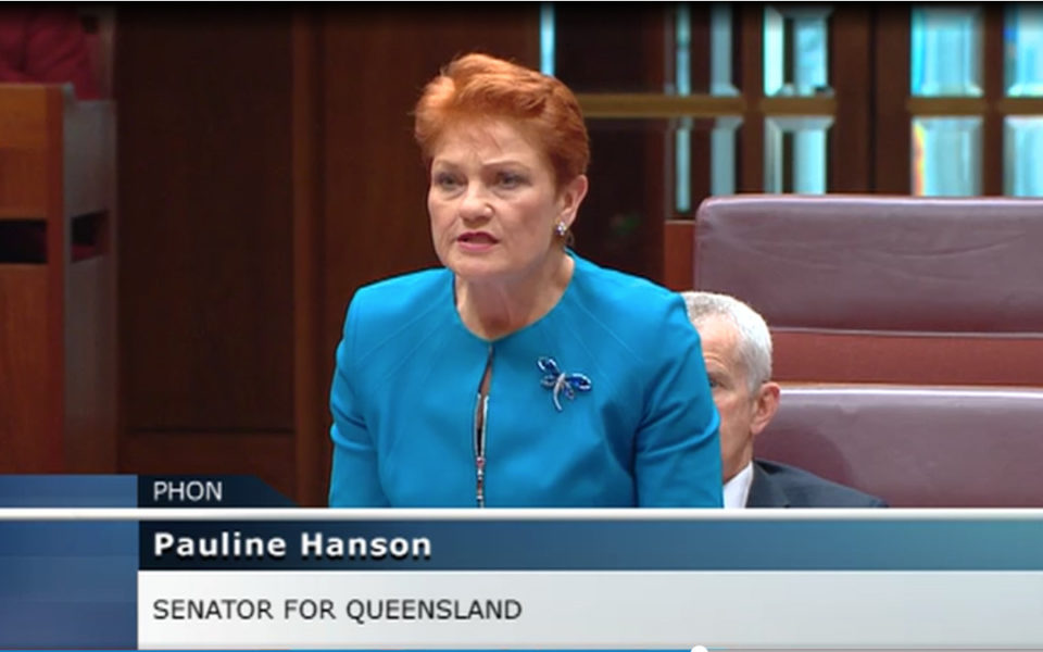 Pauline Hanson accuses son's ex of false sexual abuse claims