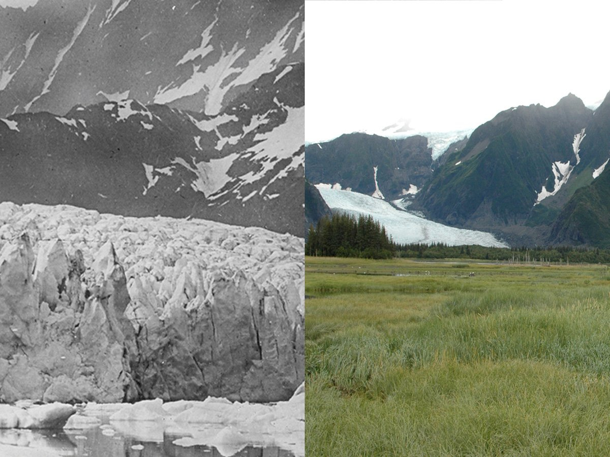 A pair of images show the retreat of Pedersen Glacier in Alaska between 1917 and 2005. Photo: USGS