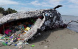 A whale constructed entirely from plastic waste.
