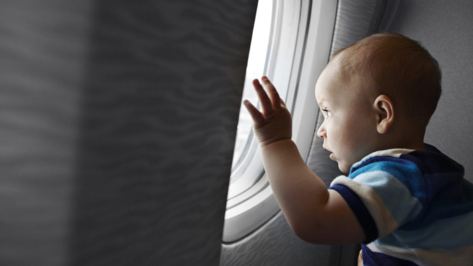 Baby staring out plane window.