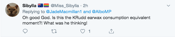 Kevin Rudd tweet