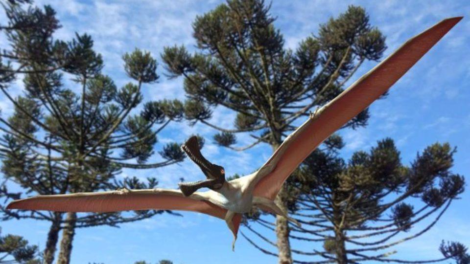 pterosaur winton
