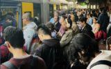 sydney trains wynyard