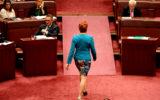 pauline hanson vote senate