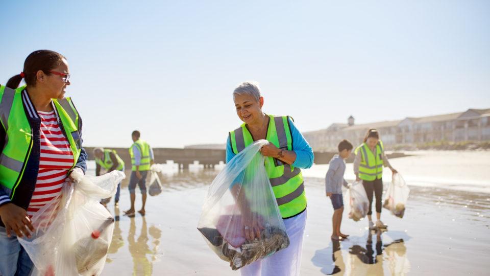 Green jobs taskforce