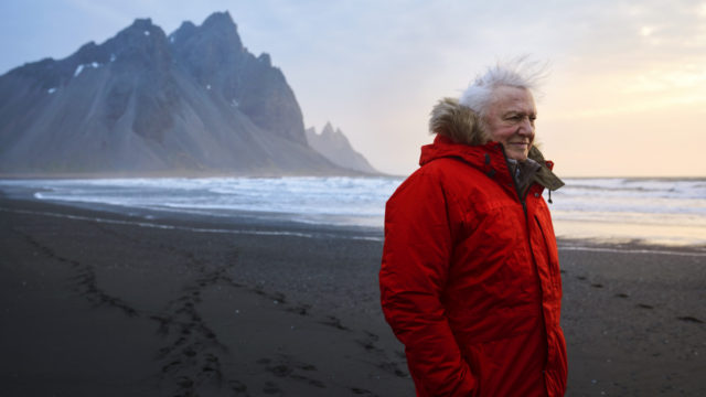 David Attenborough: Humans have made 'tragic, desperate mess'